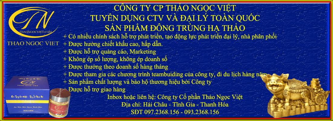 Công ty cổ phần Thảo Ngọc Việt xây dựng chiến lược phát triển hệ thống nhà phân phối, Đại lý, cộng tác viên trên toàn quốc.
