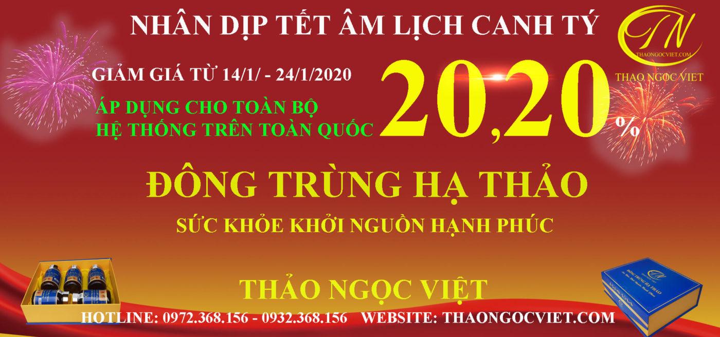 Thảo Ngọc Việt khuyến mại tết 2020