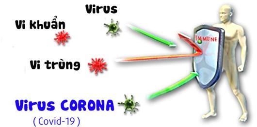 Cách phòng virus corona cho gia đình
