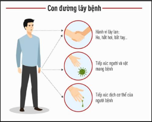 Con đường lây lan của virus corona (Covid-19)