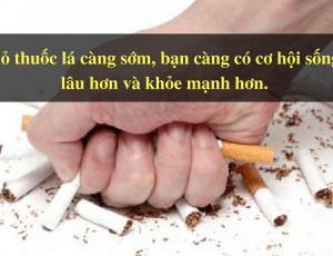 Bỏ thuốc lá tốt cho chứng bệnh phổi tắc nghẽn mãn tính -COPD